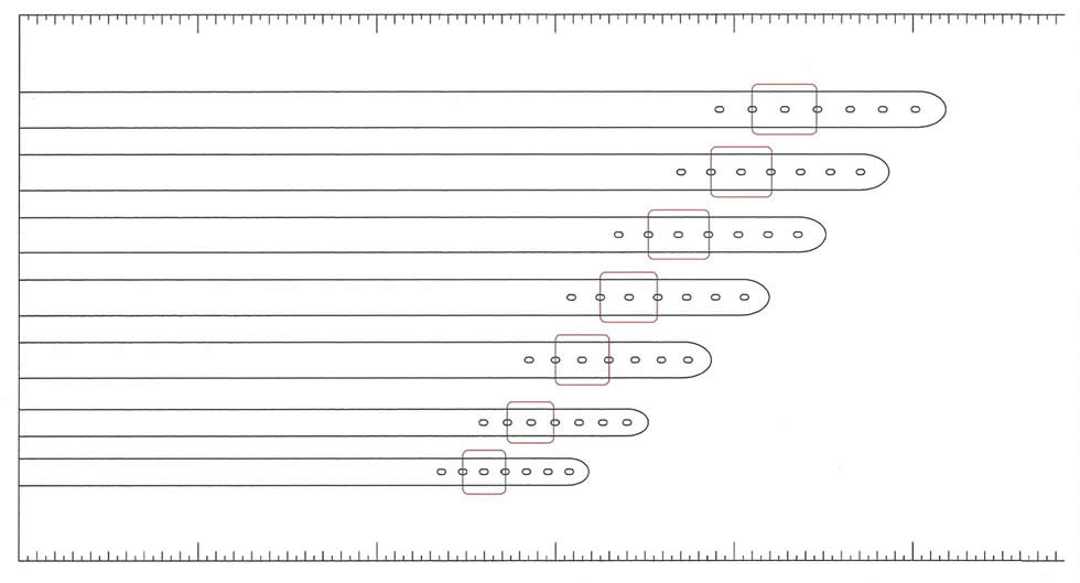 Dog Collar Sizing Chart